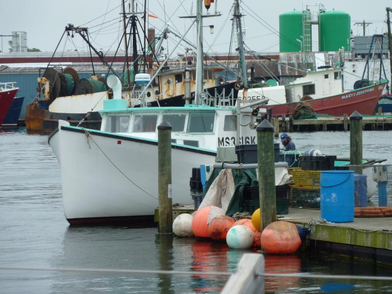 Gloucester commercial fishing boats